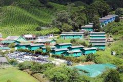 01 plantaci herbaty wioska Zdjęcie Stock