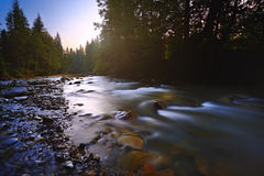 01 prut rzeka Obrazy Royalty Free