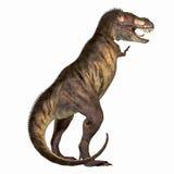 01 rex暴龙 向量例证