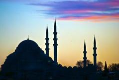 01 suleiman的清真寺 免版税库存照片