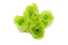01 sztuki kwiat Zdjęcia Royalty Free