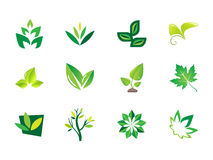 0102 Leaf Icons Royalty Free Stock Images