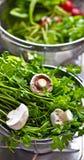 011 πράσινα λαχανικά Στοκ φωτογραφίες με δικαίωμα ελεύθερης χρήσης