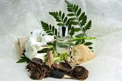 012 produkter för huvuddelomsorgshygien Royaltyfria Bilder