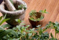 018 herbs Στοκ Εικόνες