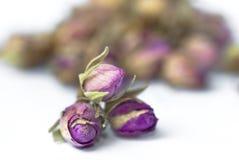 02干燥叶子玫瑰色茶 库存照片