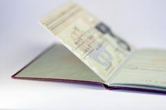 02德国人开放护照 库存图片