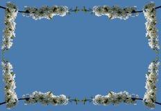 02朵花框架巨人 免版税库存照片