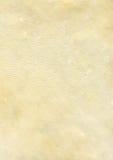 02皮革自然纹理 库存照片