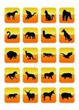 02 εικονίδια ζώων Στοκ φωτογραφία με δικαίωμα ελεύθερης χρήσης