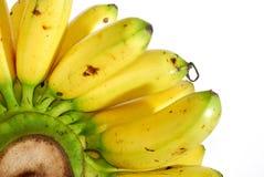 02 σειρές μπανανών Στοκ Εικόνες