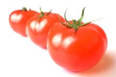 02 τρεις ντομάτες Στοκ φωτογραφία με δικαίωμα ελεύθερης χρήσης