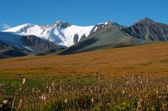 02 горы ландшафта Стоковое фото RF