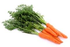 02 моркови Стоковая Фотография