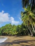 02 пляж caribbean Тобаго Стоковые Фотографии RF