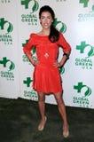 02 09 19 przyjęcie rocznego avalon ca globalny zielony Hollywood Jacqueline macinnes Oscar przyjęcie zielony s usa drewniany Zdjęcia Royalty Free