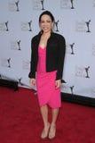 02 12 19 2012 för hollywood för hemmings för hart för utmärkelseca-skrå författare för palladium kaui royaltyfri foto