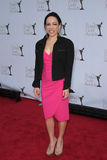 02 12 19 2012 nagród ca cechu jelenia hemmings Hollywood kaui palladu pisarza Zdjęcie Royalty Free