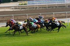 02 Hong kong racecourse shatin Zdjęcia Stock