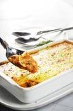 02 lasagne mokrawy Obraz Royalty Free