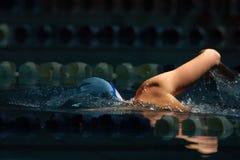 020 som simmar Arkivfoto