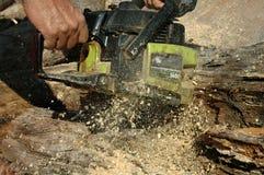 021伐木工人 图库摄影