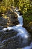 0219 Paradise River Mount Rainier Royalty Free Stock Image