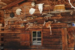 025 αλπικά Στοκ φωτογραφία με δικαίωμα ελεύθερης χρήσης
