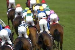 025 som horseracing Royaltyfri Fotografi