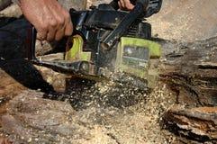 027伐木工人 免版税图库摄影