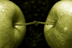03个苹果绿色 库存图片