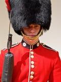 03威严的英王卫士伦敦 图库摄影