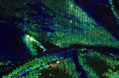 03条织品鱼绿色缩放比例 免版税库存图片