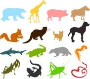 03 животных силуэта Стоковое Изображение RF