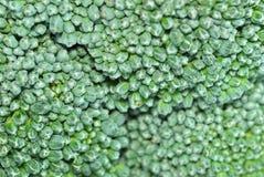 03 broccoliserie Royaltyfria Bilder