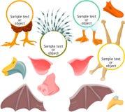 03 djura symboler Royaltyfria Bilder