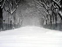 03 häftig snöstorm Central Park Royaltyfria Bilder