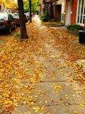 03 jesień fotografia stock
