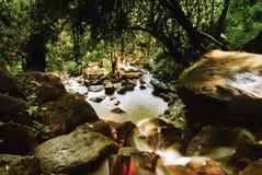 03 naturresurser Royaltyfria Bilder