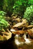 03 naturresurser Royaltyfri Bild