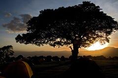 033非洲横向ngorongoro 免版税库存图片