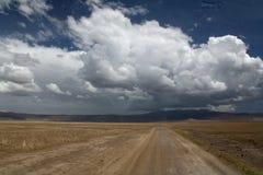 038非洲横向ngorongoro 免版税库存图片