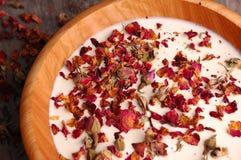 04个瓣玫瑰色温泉 库存照片