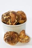 04个蘑菇系列 免版税库存照片
