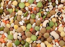 04混杂的蔬菜 库存图片