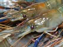 04食物虾 免版税库存照片