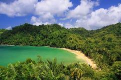 04 пляж caribbean Тобаго Стоковое фото RF