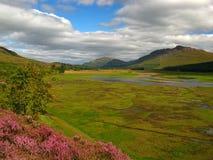 04 cairngorm国家公园 免版税库存照片