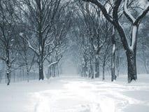 04 häftig snöstorm Central Park Arkivfoto