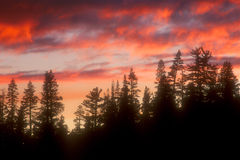 04 niebo Fotografia Royalty Free